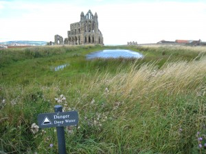 whitby abbey deep water